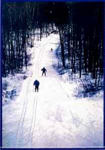 """""""Trails"""